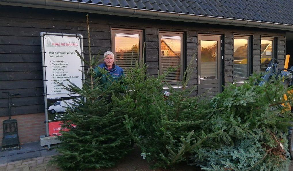 kerstbomen verkoop